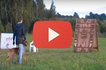 Видео с испытаний и соревнований