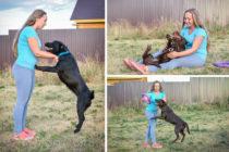Лабрадоры Пипа и ее дочь Ула провели в нашей гостинице для собак 10 дней. Судя по всему им очень понравилось!