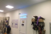 Центр дрессировки Dog Show Club. Зал для занятий