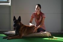 Малинуа Джеб на сеансе расслабляющего зоомассажа.