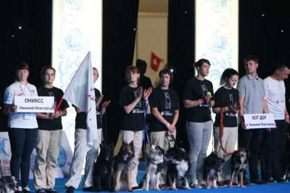 Соревнования по флайболу на WORLD DOG SHOW-2016. Москва, Крокус-Экспо.