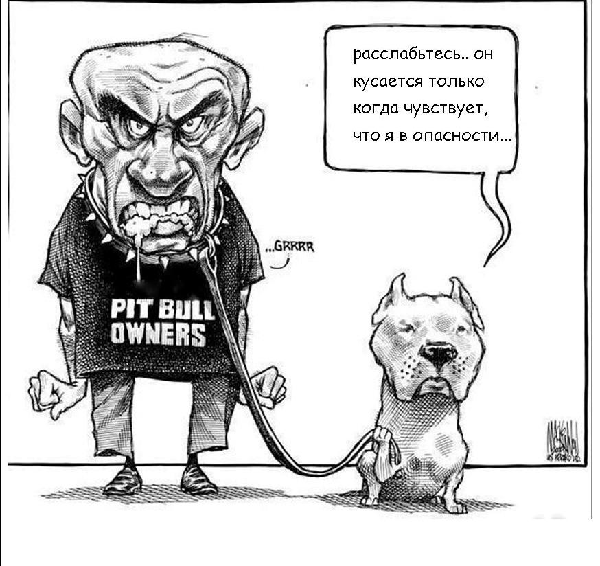 Бойцовая собака - нет такой?